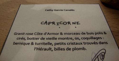 Capricorne F0.jpg